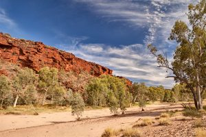 Following the Finke River